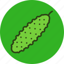 cucumber, food, vegetable icon