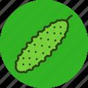 cucumber, food, vegetable