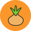 food, kitchen, onion, vegetable icon