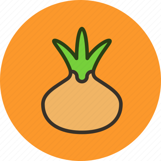 food, kitchen, onion, vegetable icon