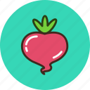 food, radish, turnip, vegetable icon