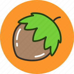 food, hazelnut, nut, vegetable icon