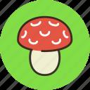 amanita, danger, food, mushroom icon