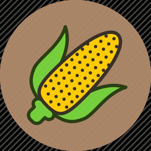 corn, food, kitchen, vegetable icon