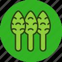 asparagus, food, sparrowgrass, vegetable
