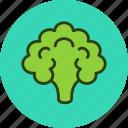 cauliflower, food, vegetable, cooking icon