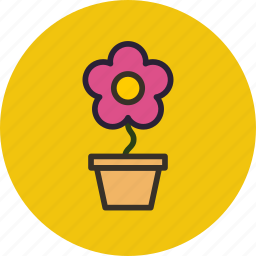 flower, nature, pot, present icon