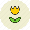 flower, nature, present, tulip icon