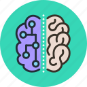 brain, connection, neuro, science icon