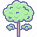 nature, tree icon