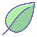 ecology, leaf, nature icon