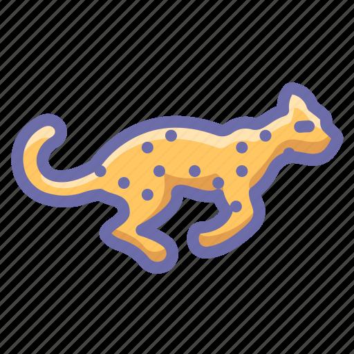 cheetah, fast, leopard icon