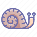 snail, shell, slow icon