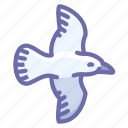 bird, fly, seagull icon