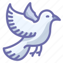 bird, dove icon