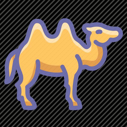 camel, desert, zoo icon
