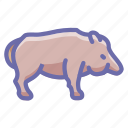 animal, boar, pig icon