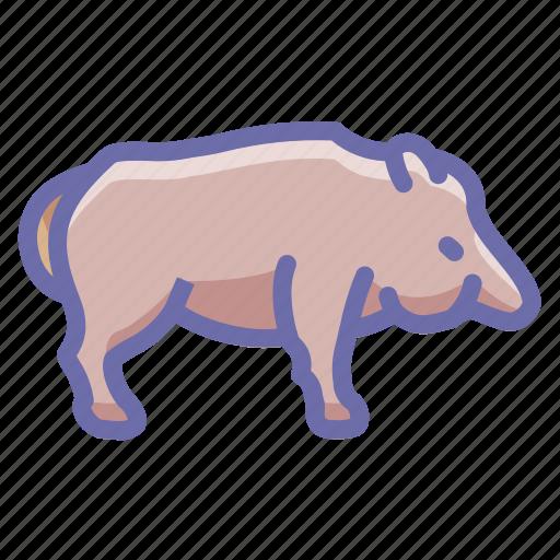 animal, boar, pig icon