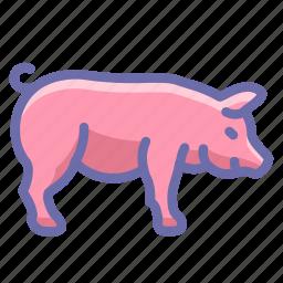 farm, pig icon
