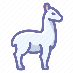 lama, llama, wool icon