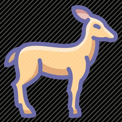deer, doe, springbok icon