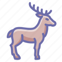 deer, elk, horns icon