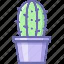 cactus, pot icon