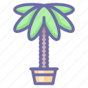 decoration, palm, home