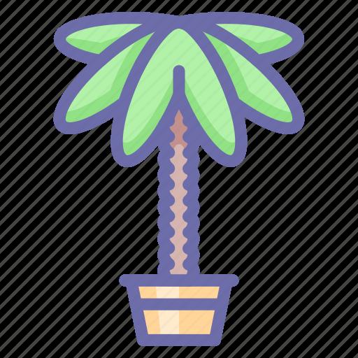 decoration, home, palm icon