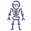 anatomy, bones, skeleton, skull icon