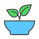 bowl, dish, food, fresh, vegan