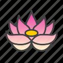 flower, lotus, plant, spa