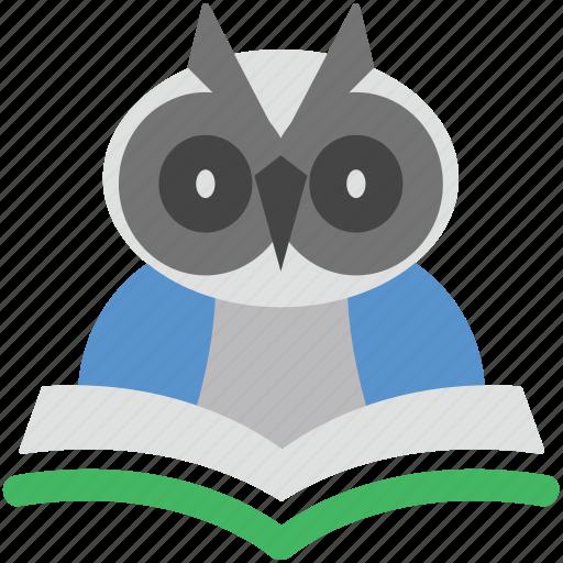 graduate owl, graduation, owl degree, owl sage, wisdom icon