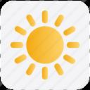 brightness, light, summer, sun, sunlight, weather