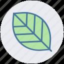 ecology, leaf, nature, plant icon