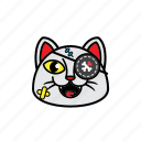 avatars, cat, face, pirate, smile icon