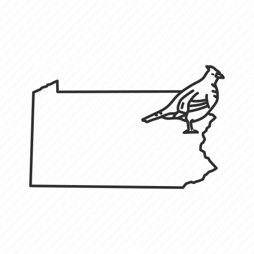 borders, map, pennsylvania, state, state bird, state symbol, usa icon