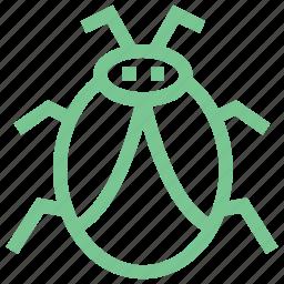 animal, bug, bug sign, firebug, ladybird icon