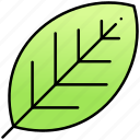green, leaf, leaves, ui icon