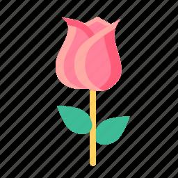 day, flower, lotus, love, romantic, rose, valentine icon
