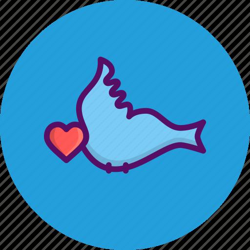 bird, couple, day, heart, love, romantic, valentine icon