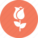 day, flower, lotus, love, romantic, rose, valentine icon