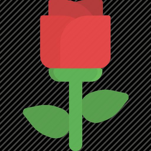 flower, love, nature, romance, rose, valentine, valentine's day icon