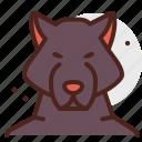 halloween, horror, monster, werewolf icon