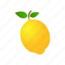 design, food, fruit, lemon, nature, yellow icon