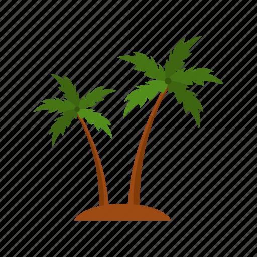 design, nature, palm, summer, tree icon