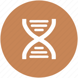 biology, dna, dna chain, dna helix, dna strand, genetics, science icon