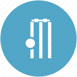 ball, cricket, cricket pitch, cricket stump, sports, wicket icon