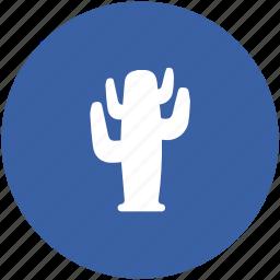 barrel cactus, cactaceae, cactus, desert, desert plant, wild plant icon