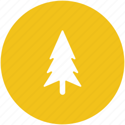 fir tree, forest, nature, park, pine tree, yard trees icon